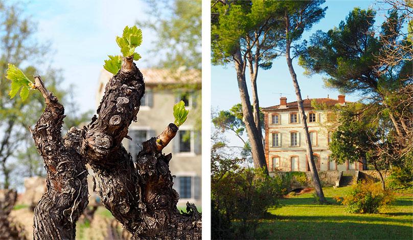 chateau, bois ,arlène, domaine viticole, vacqueyras