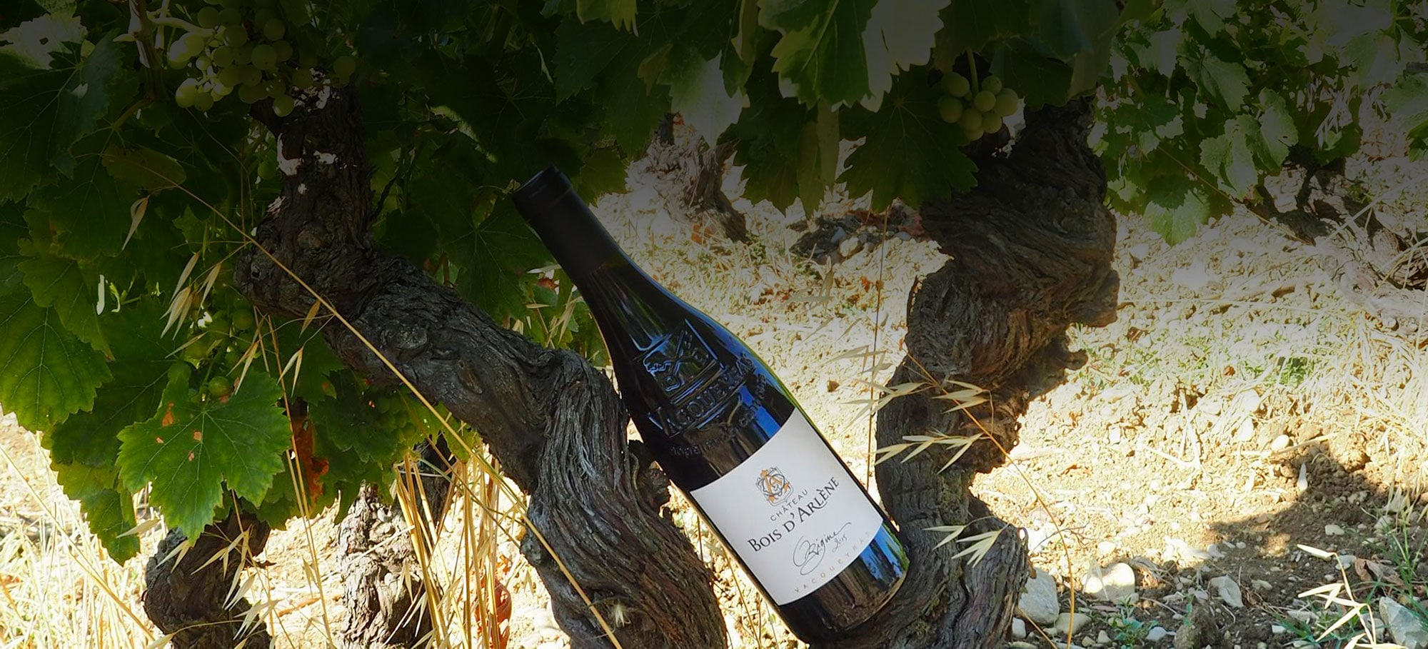 vin, chateau bois d'arlene, vacqueyras, cote du rhone
