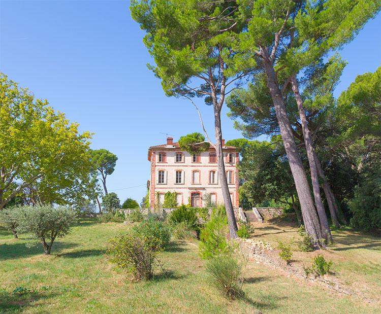 chateau, bois, vins, vignoble, viticole, domaine