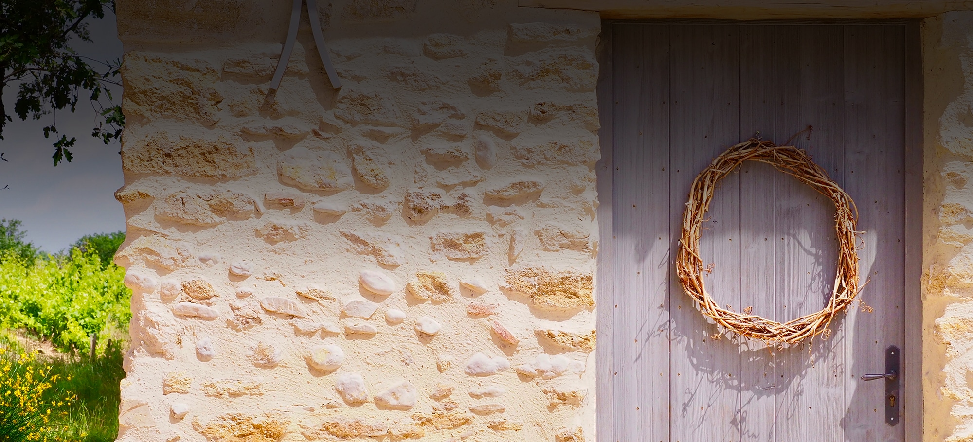 oeunotourisme, vin, domaine viticole